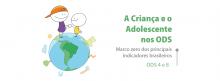 Brasil caminha lentamente na implementação dos Objetivos de Desenvolvimento Sustentável