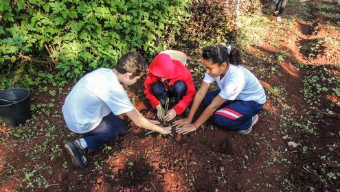 Projeto Escola no Campo, Valorização da vida no campo