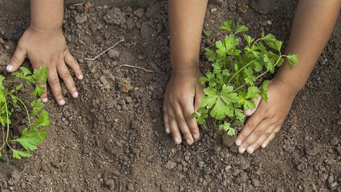 Fundação Abrinq acompanha de perto o trabalho das Empresas Amigas da Criança
